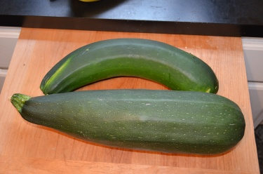 Zucchini from a friend's garden