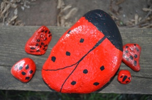 Our family of ladybugs.