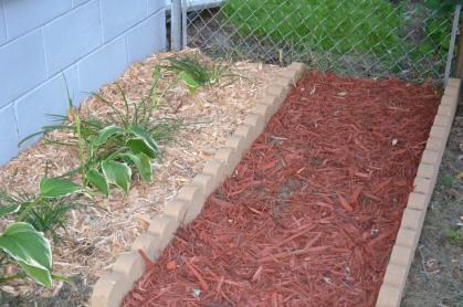 Hosta & Day Lily Garden