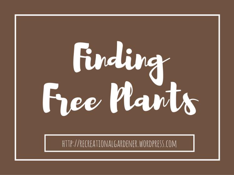free plant