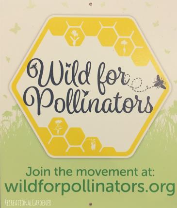 pollinators1